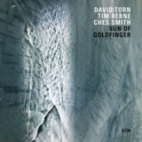 TORN, David / Tim Berne / Ches Smith: The Sun Of Goldfinger
