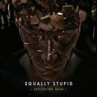 EQUALLY STUPID: Exploding Head