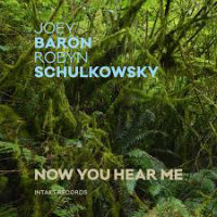 BARON, Joey & Robyn Schulkowsky: Now You Hear Me
