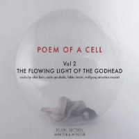 V/A: Poem Of A Cell Vol. 2 – The Flowing Light Of The Godhead