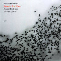 BOLLANI, Stefano: Stone In The Water